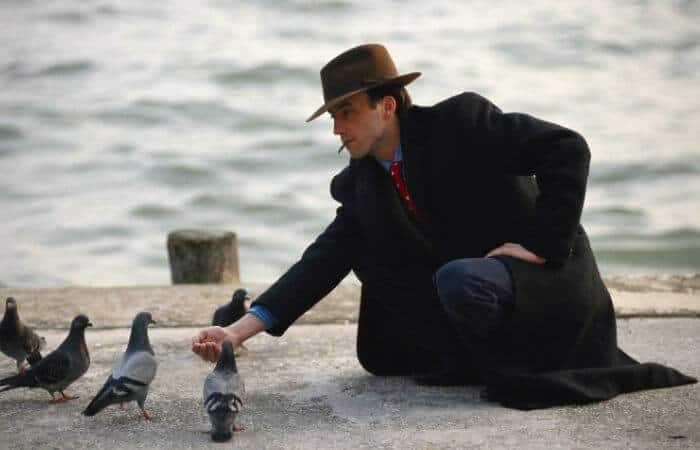 man and pigeons