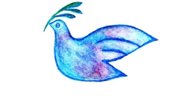 dove with olive branch symbol